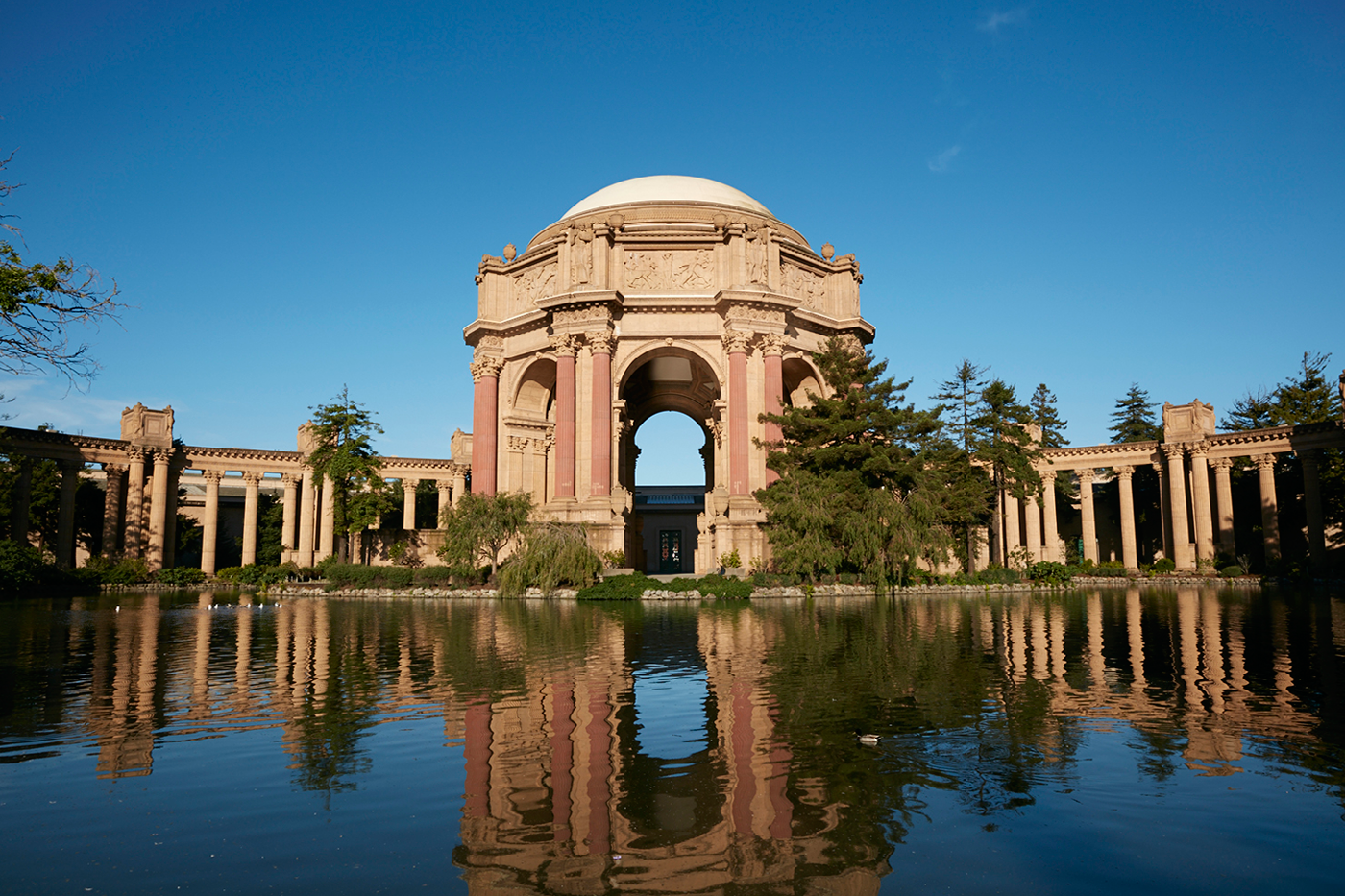 The Venue at the Palace of Fine Arts